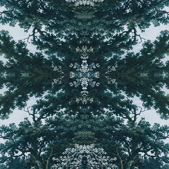 """Angel and Boho """"Trees Two Multi Graphic """""""