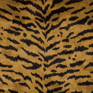 """House of Hackney """"Tigre"""" in Taupe"""