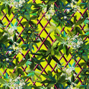 "Christian Lacroix for Designers Guild ""Canopy"" in Lime"