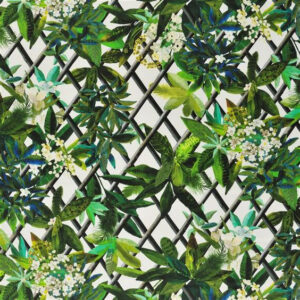 "Christian Lacroix for Designers Guild ""Canopy"" in Malachite"