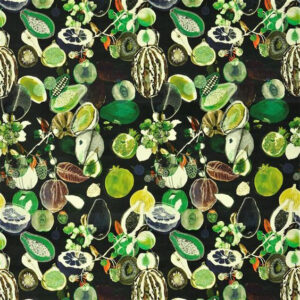 "Christian Lacroix for Designers Guild ""Soft Manaos"" in Onyx"