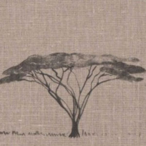 "Mally Skok ""Botswana Trees"" in Charcoal on Flax"