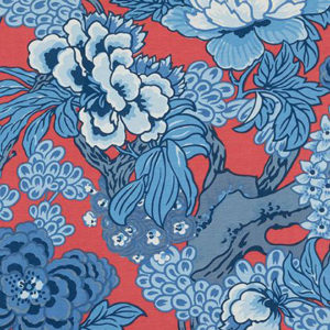 "Thibaut ""Honshu"" in Red & Blue"