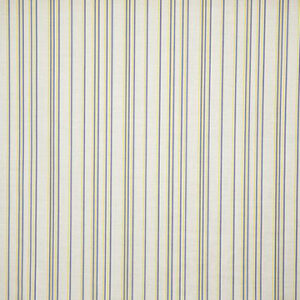 "Virginia White Collection ""Agnes Vertical Lines"" in Blue & Lime"